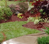 Kaizen Landscape and property maintenance in London Ontario